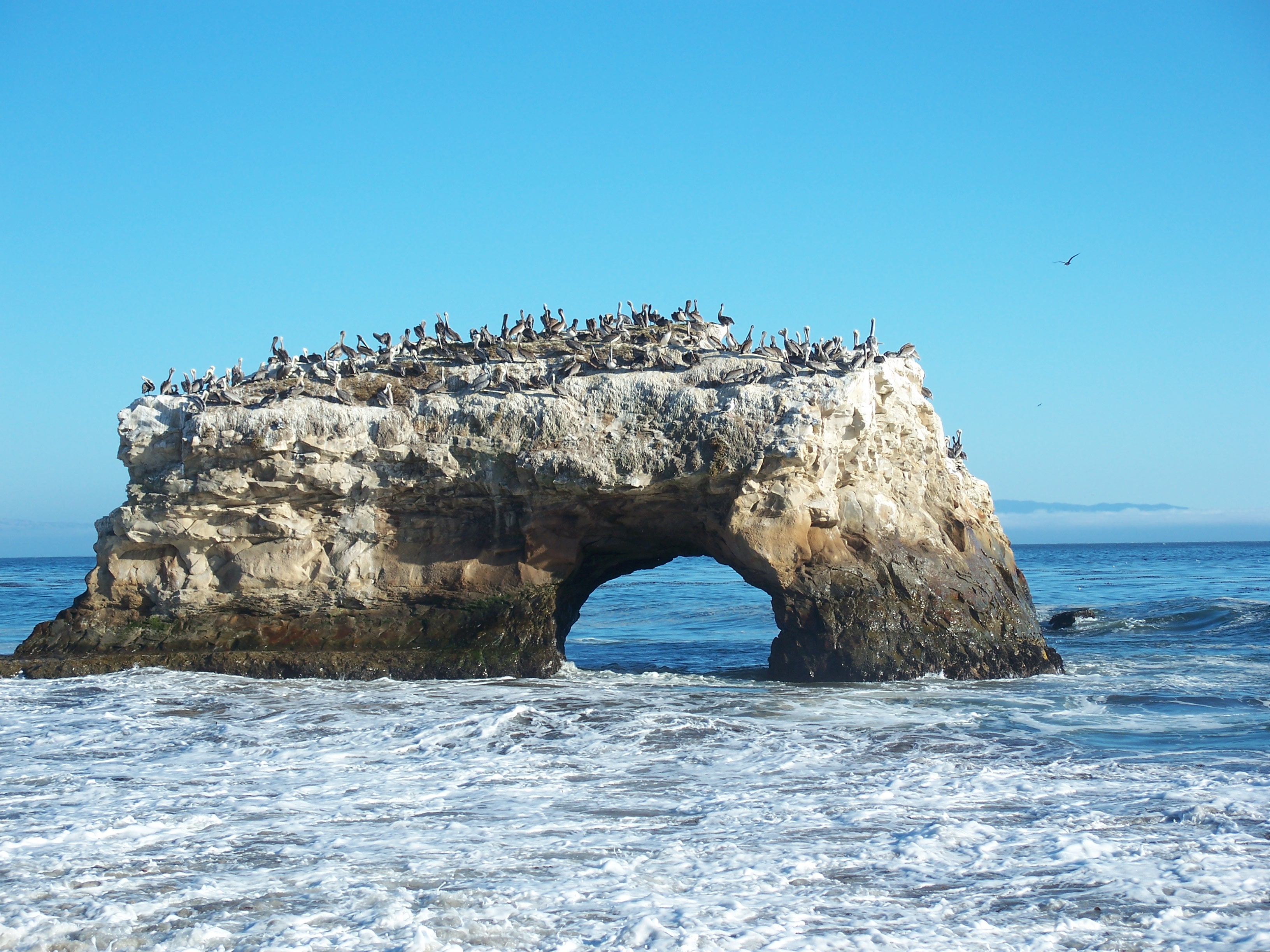 Natural Bridge Beach California
