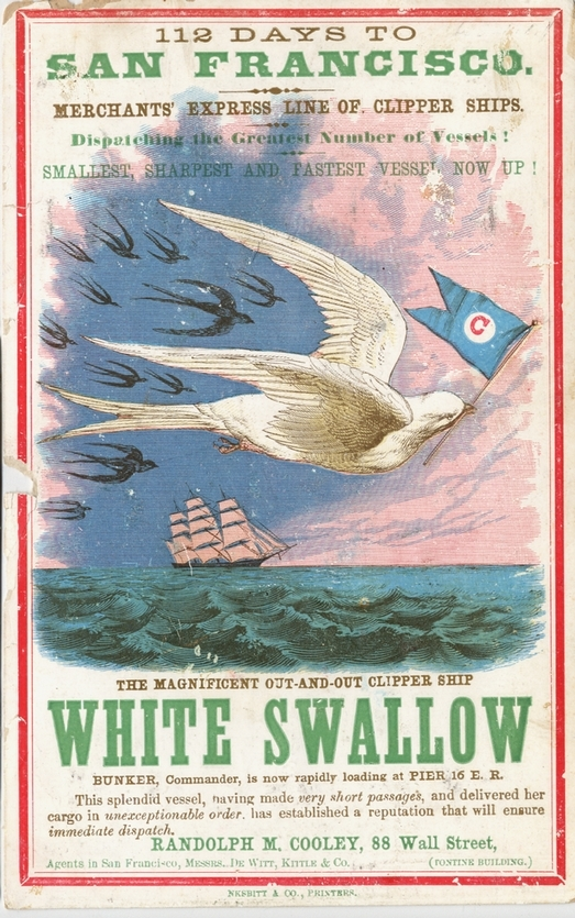The White Swallow 95