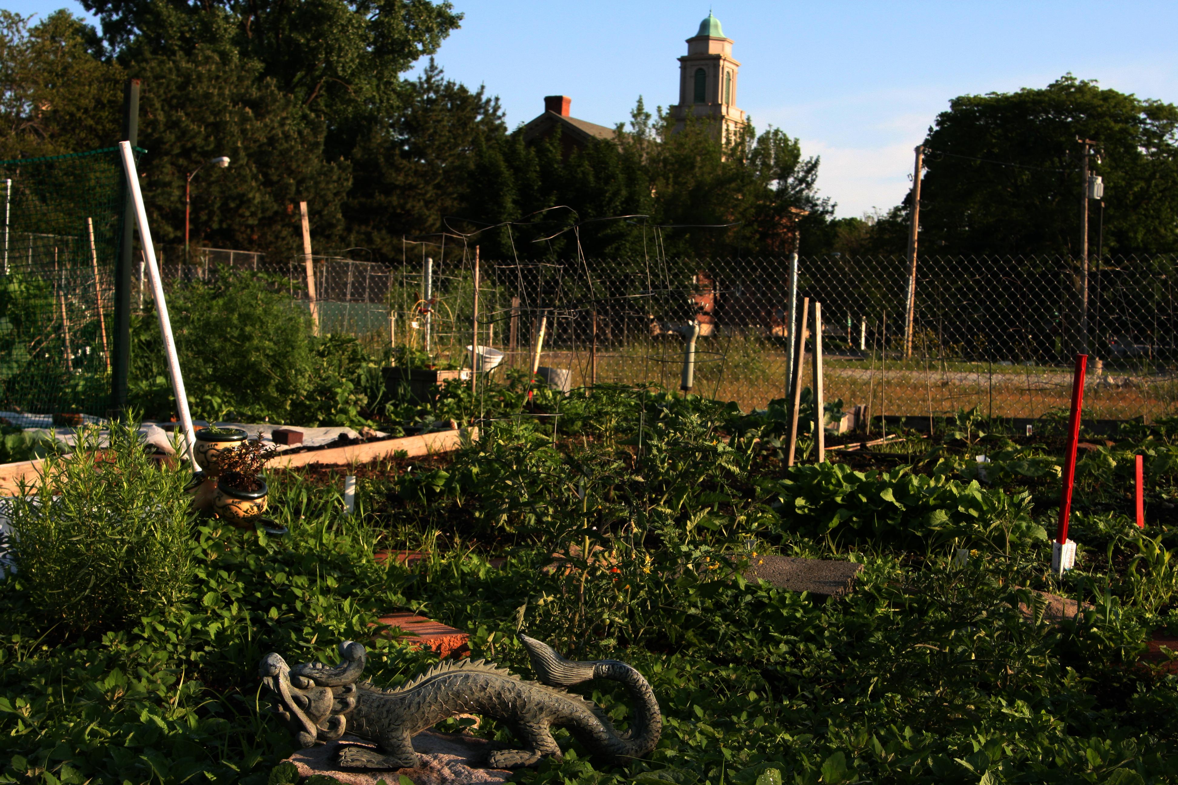 community gardens urban gardening and farming for teens