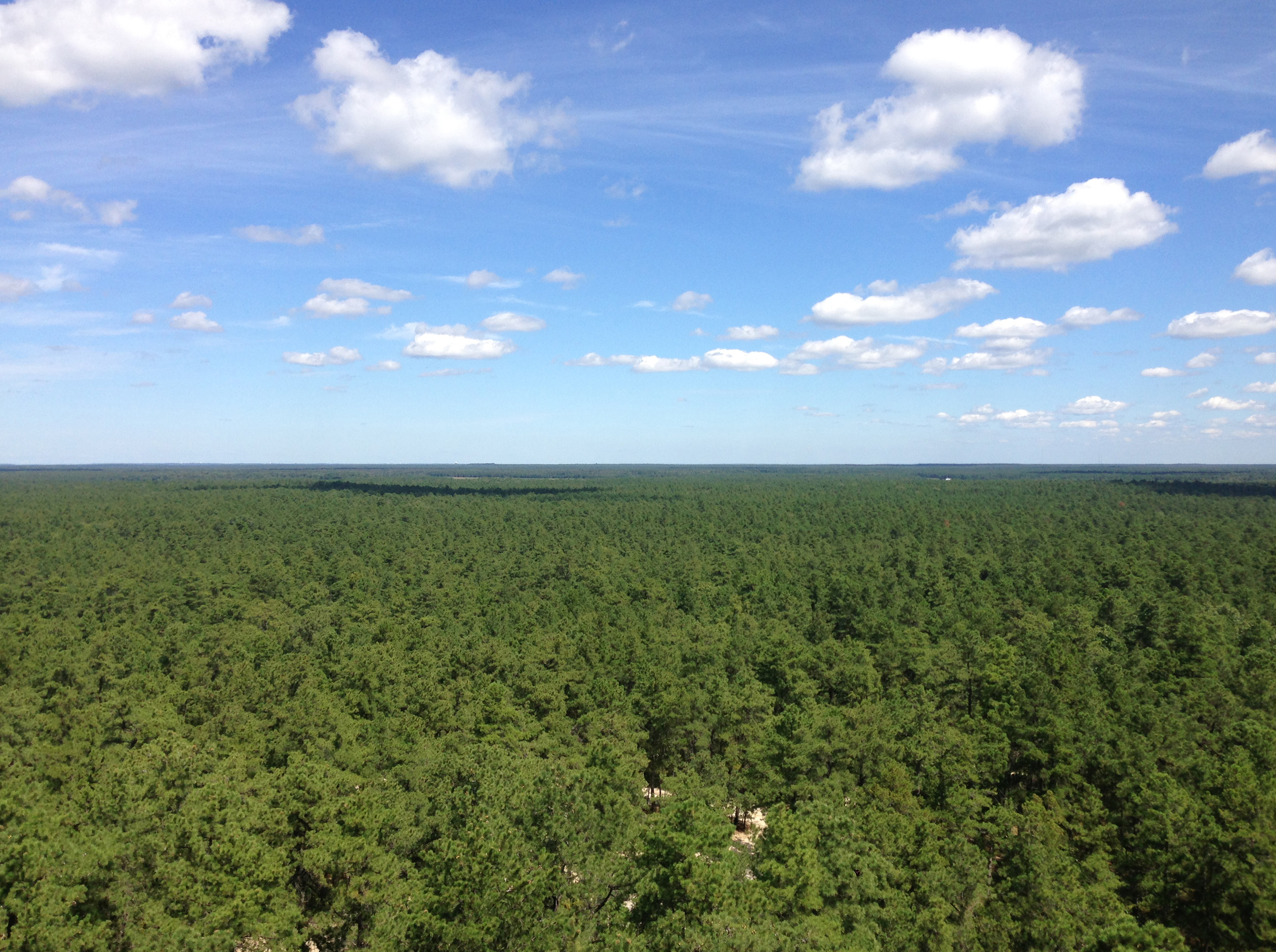Apple Pie >> File:2014-08-29 12 01 24 View north from the fire tower on Apple Pie Hill in Wharton State ...