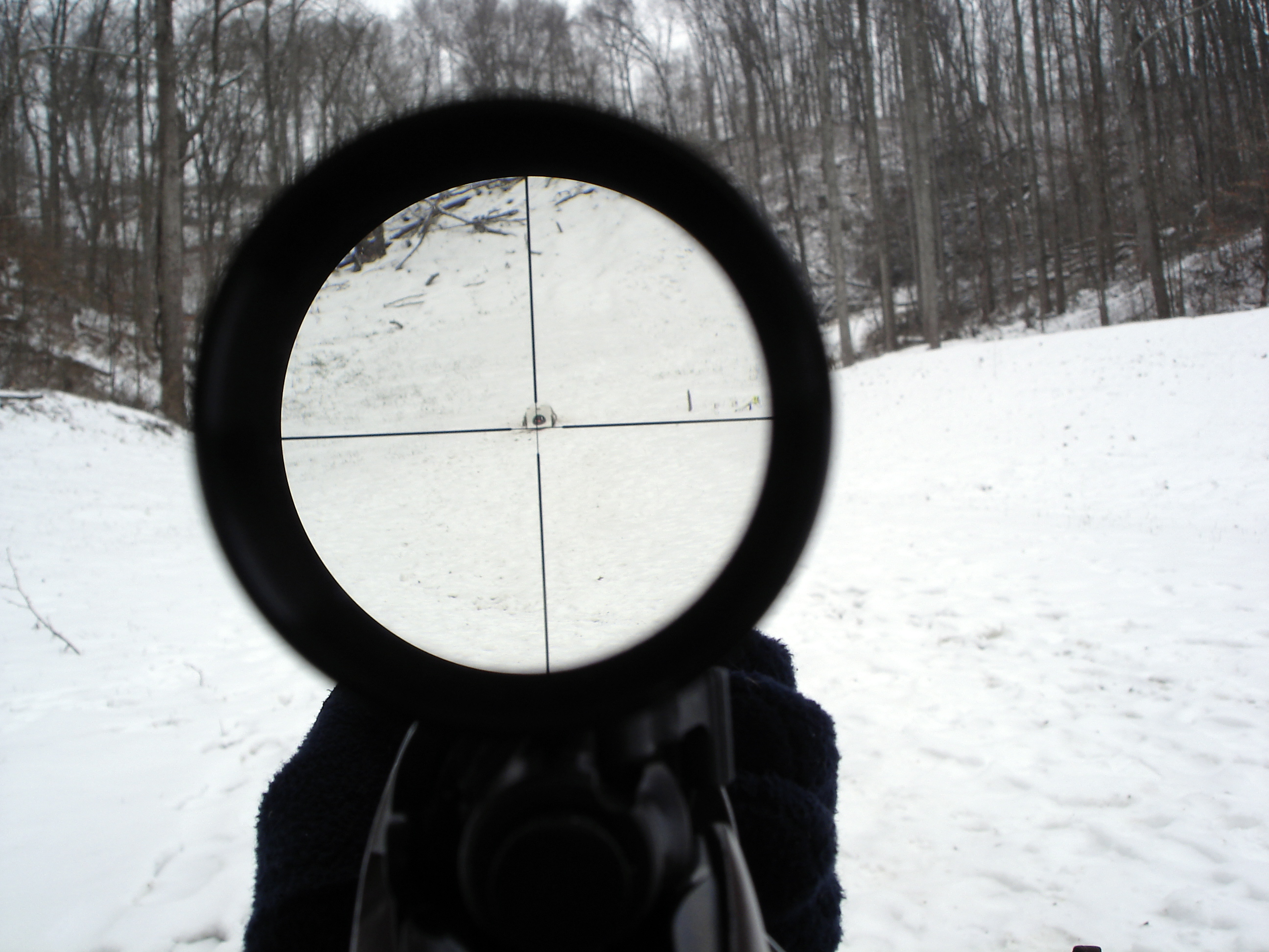 Rifle Scope View