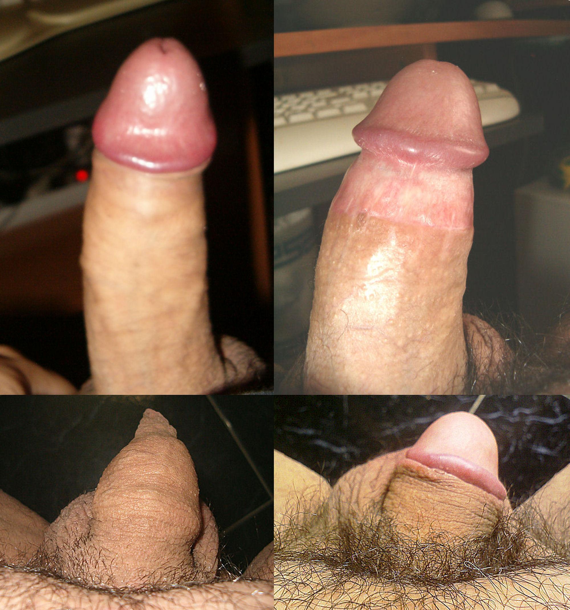 Стоячий половой член 24 фотография