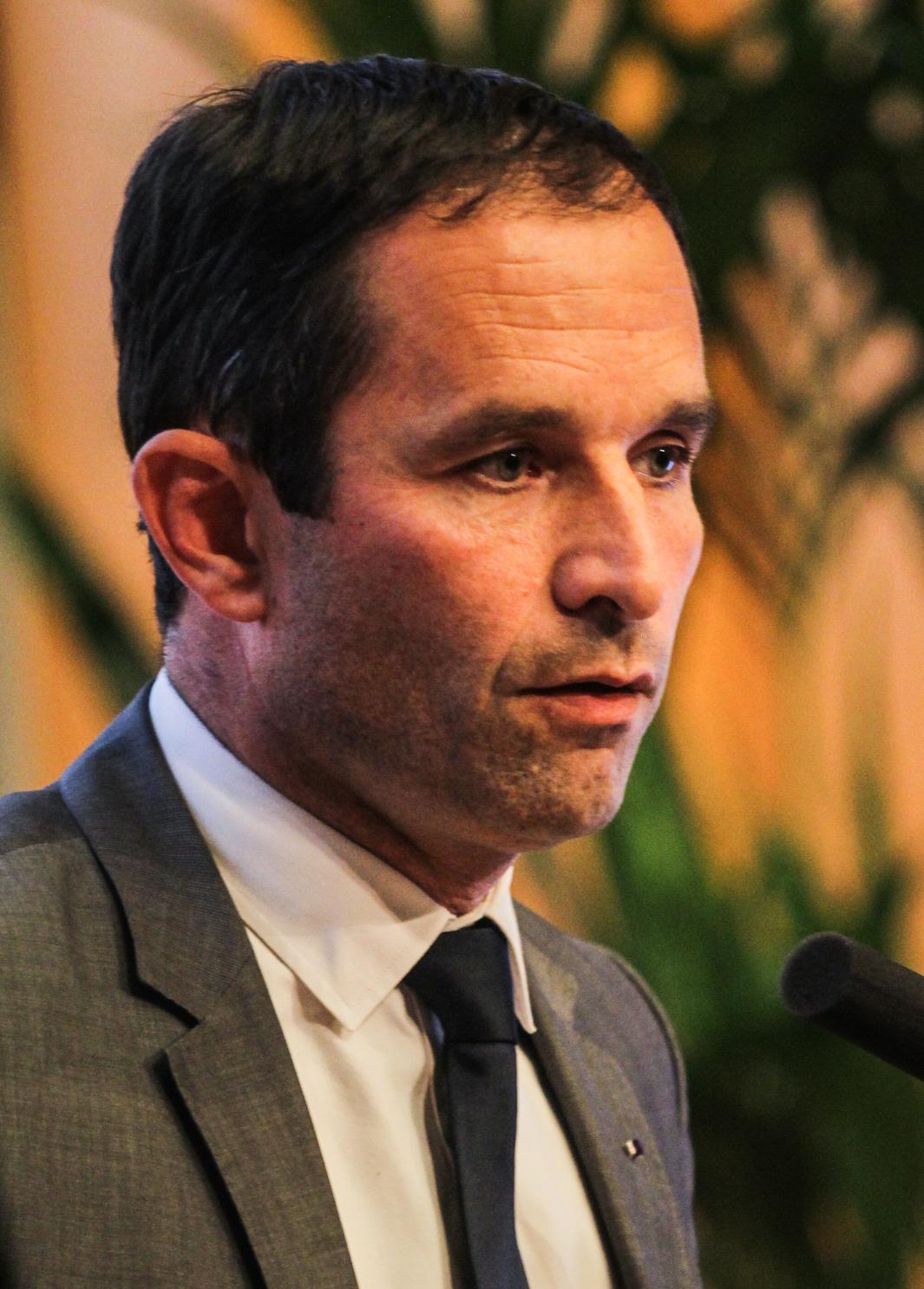 Benoît Hamon éléction présidentielle 2022, candidat