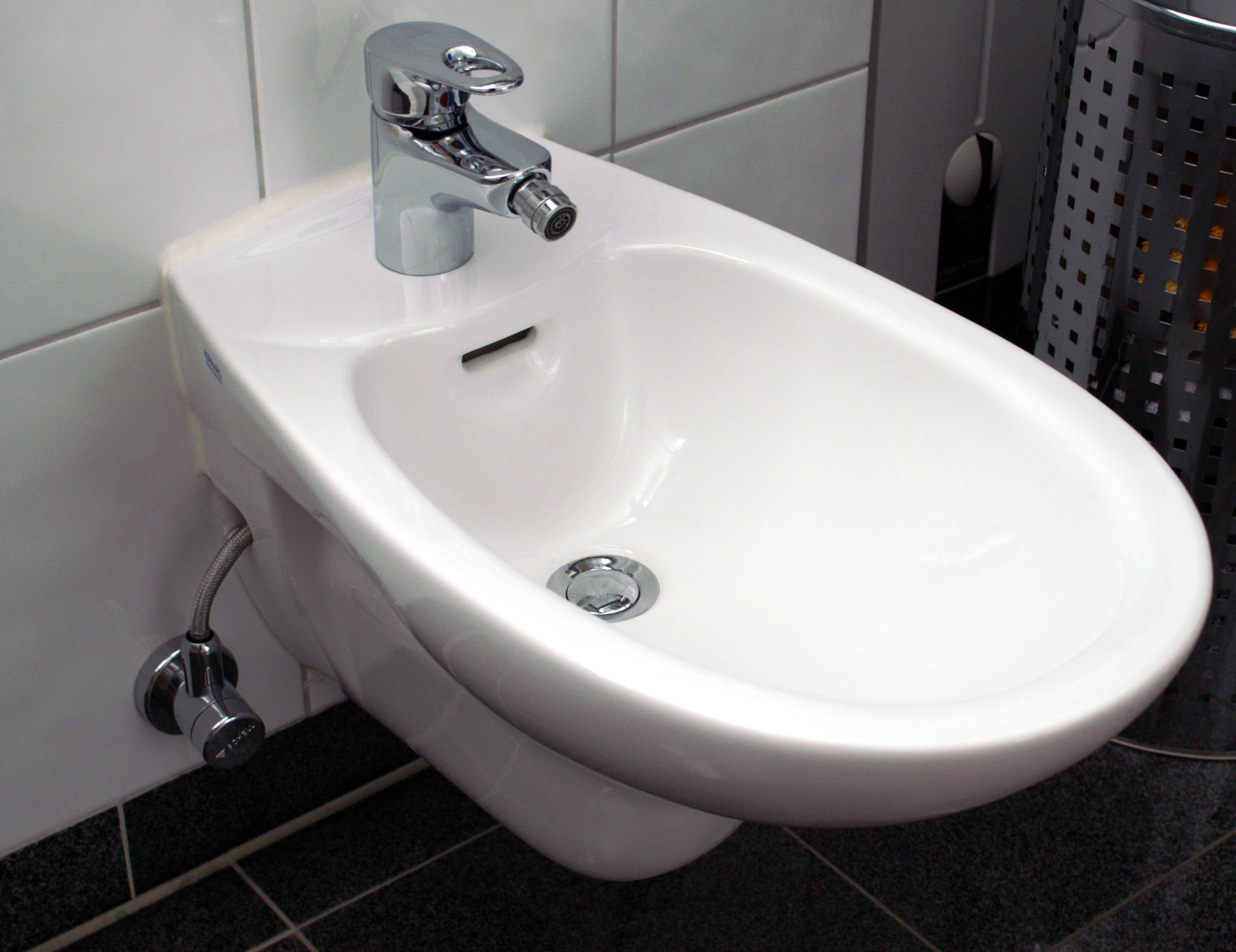 Imagenes De Baño Genital:Bathroom Toilets with Bidet