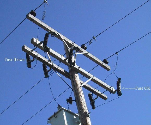 Harley davidson tail light wiring diagram free download wiring