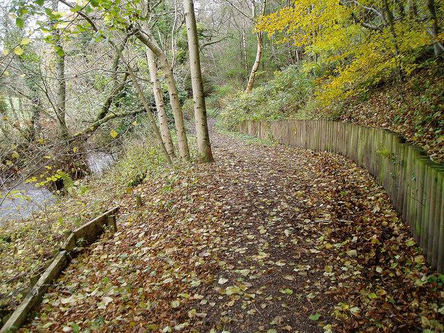 Clyde Walkway - geograph.org.uk - 1042938