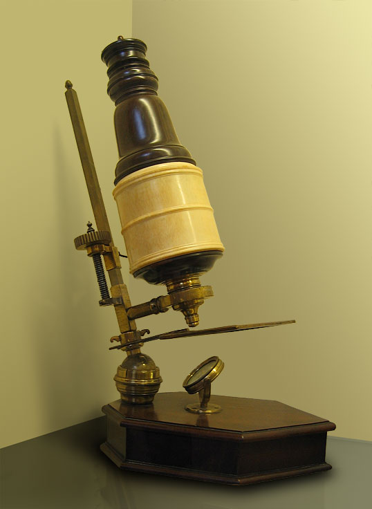 About Us | Invention of the Microscope