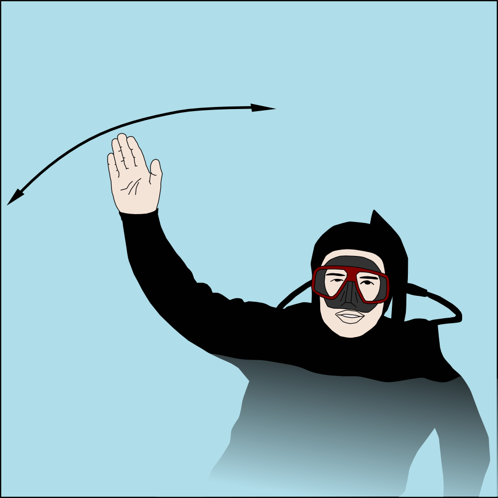 Dive hand signal Help surface 1.png