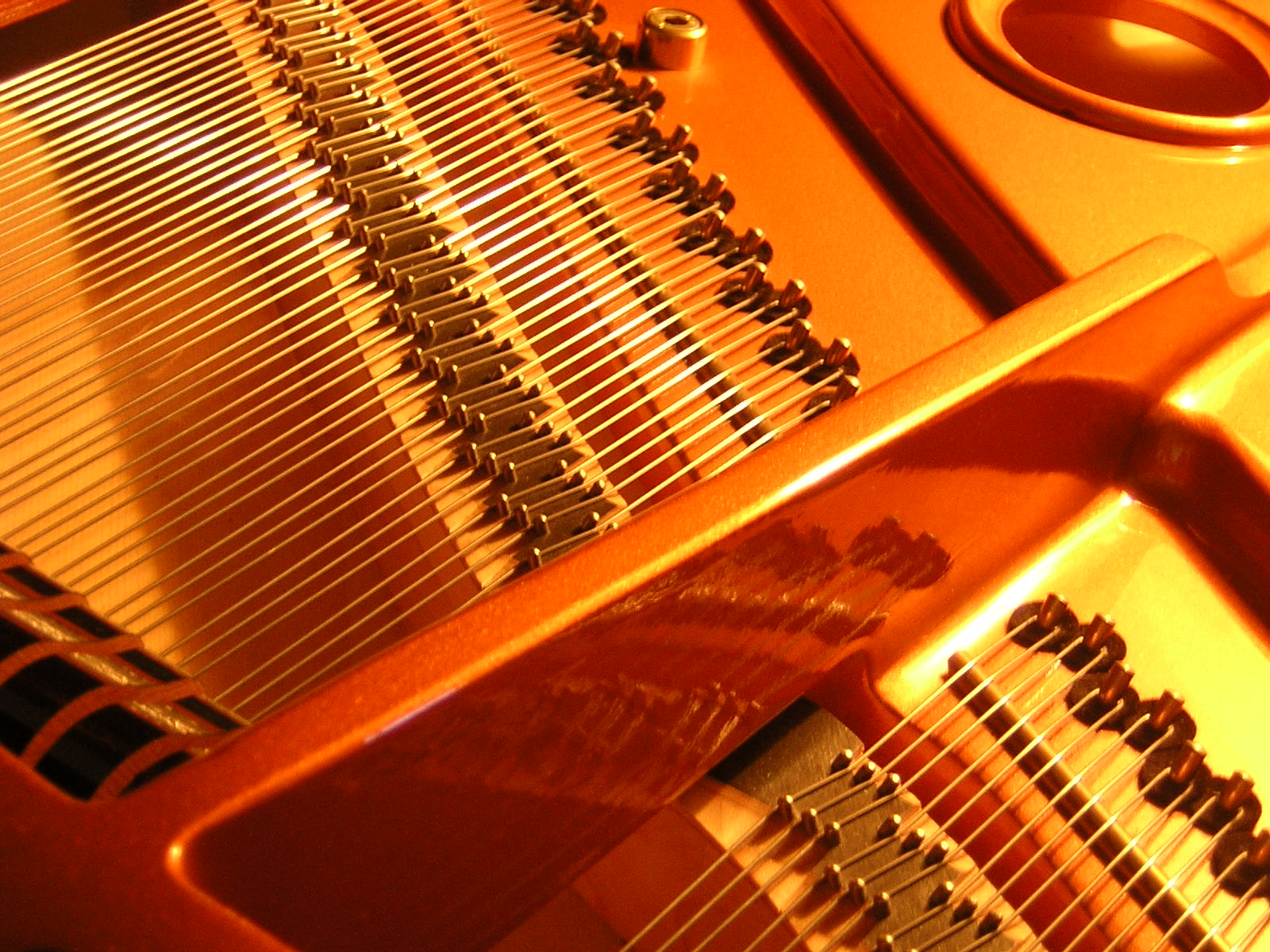 String musical instruments. Types of string instruments 21