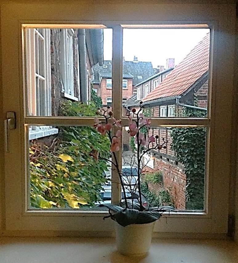 File fenster zum hof 3 hotel bremer hof in l neburg jpg for Fenster zum hof