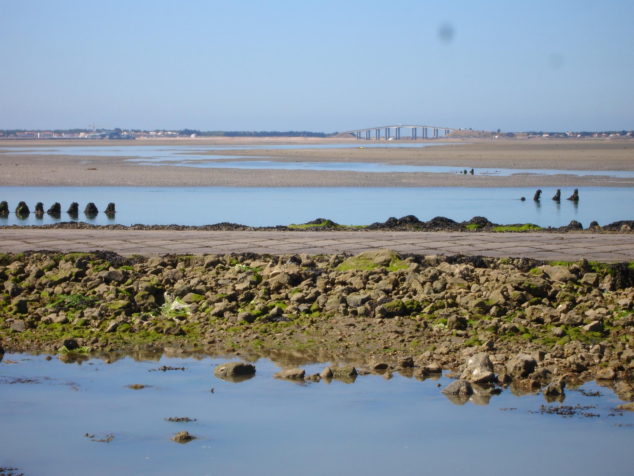 """Résultat de recherche d'images pour """"Noirmoutier"""""""