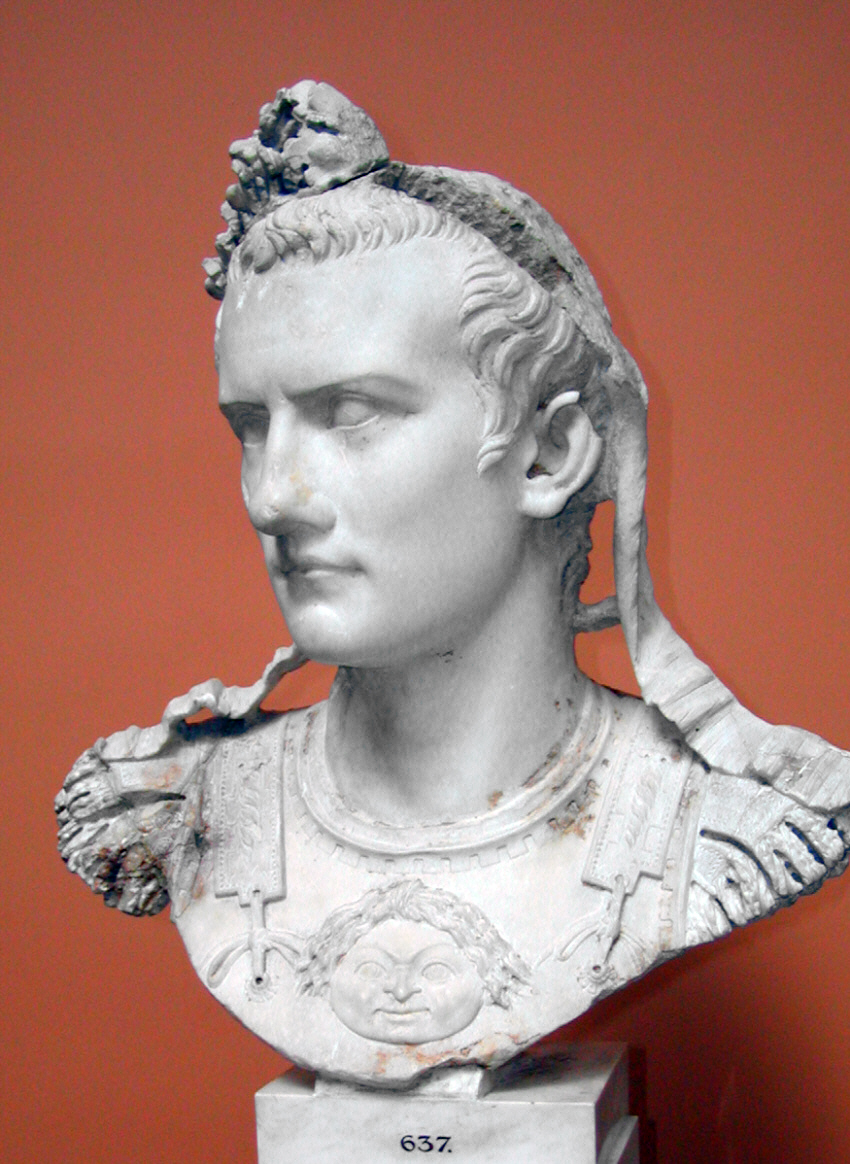 Image result for caligula viper for the roman people