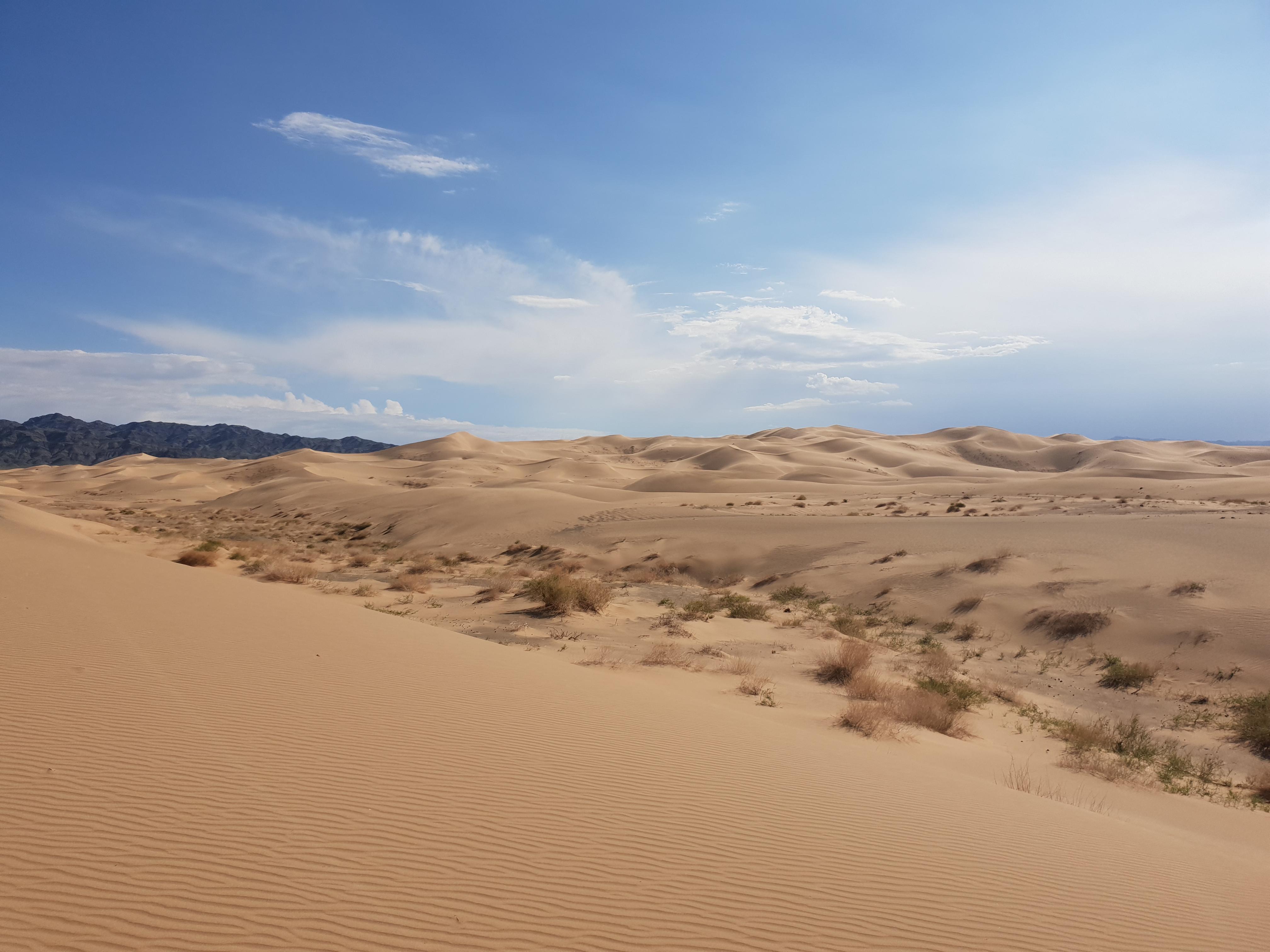 Hot ass mongolian women Gobi Desert Wikipedia