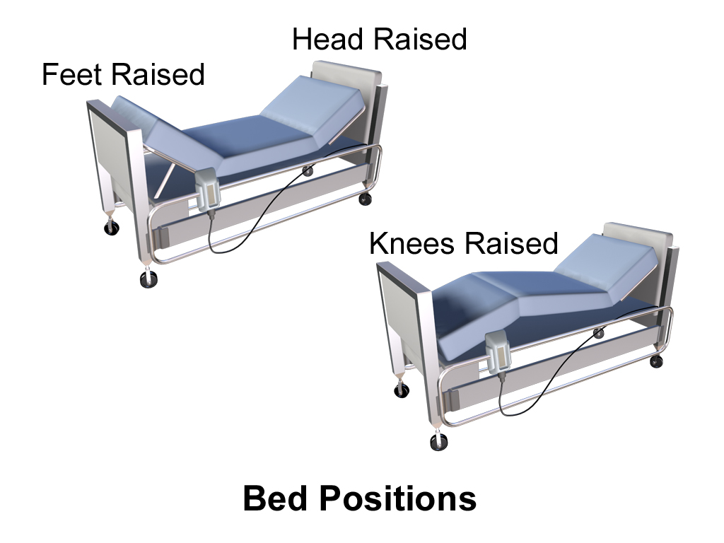 Picture of: The Best Hospital Beds Buying Guide Top 7 Choices