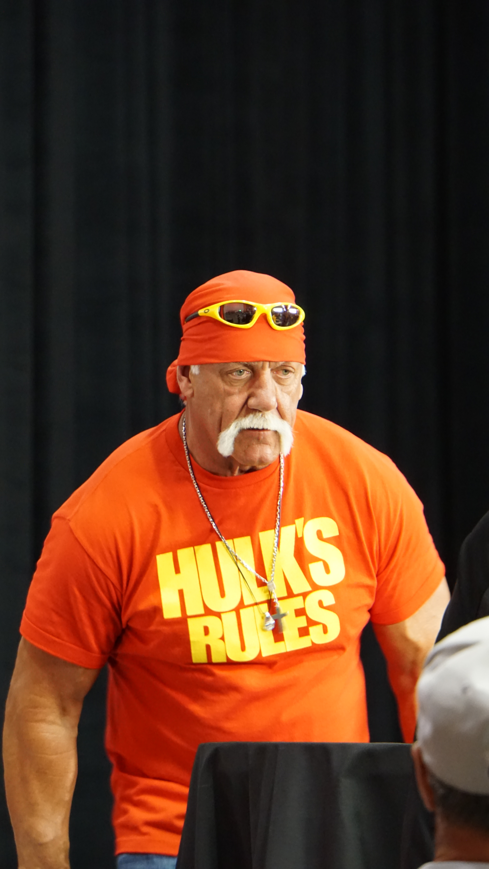 Hulk hogan remarks-2613