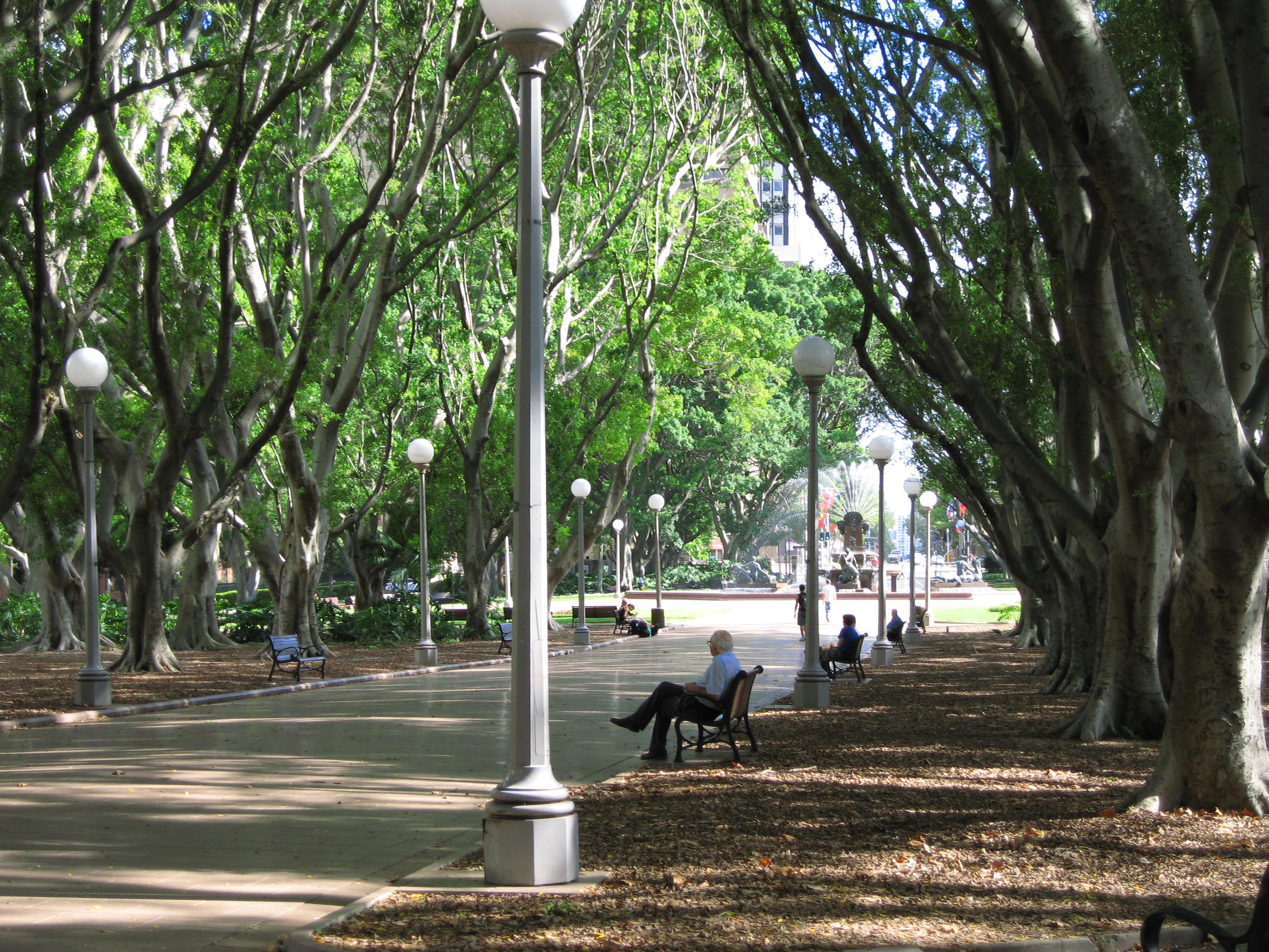 K Residence Floor Plan Hyde Park Sydney Wikiwand