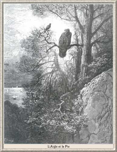 L Aigle Et La Pie Wikipedia