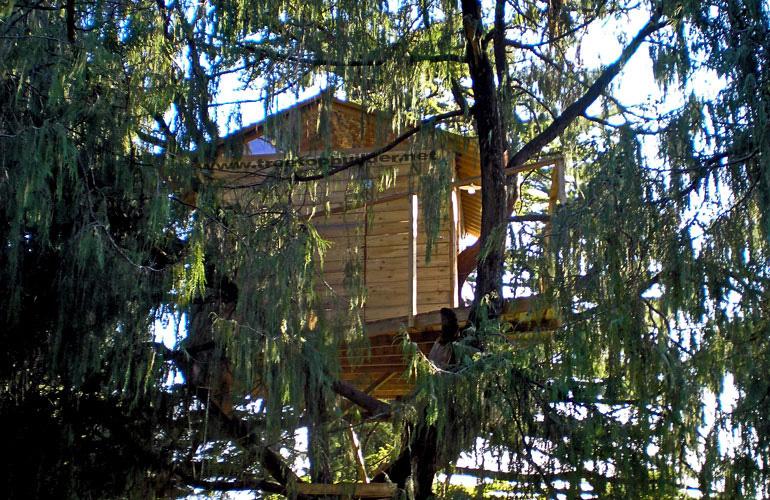 Blender italia contest la casa sull albero