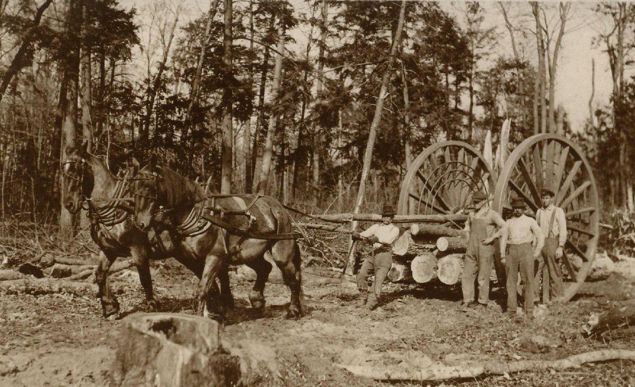 File Logging Wheels 1915 Jpg