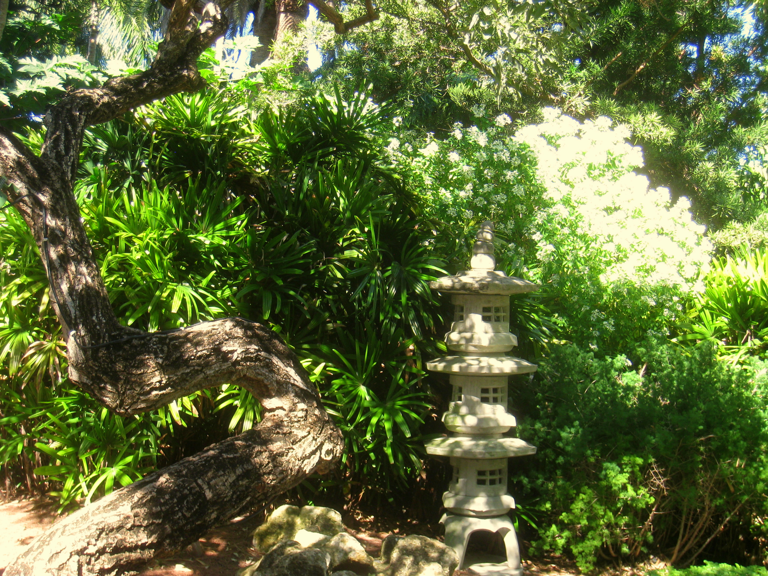 Miami Beach Botanical Garden Jov