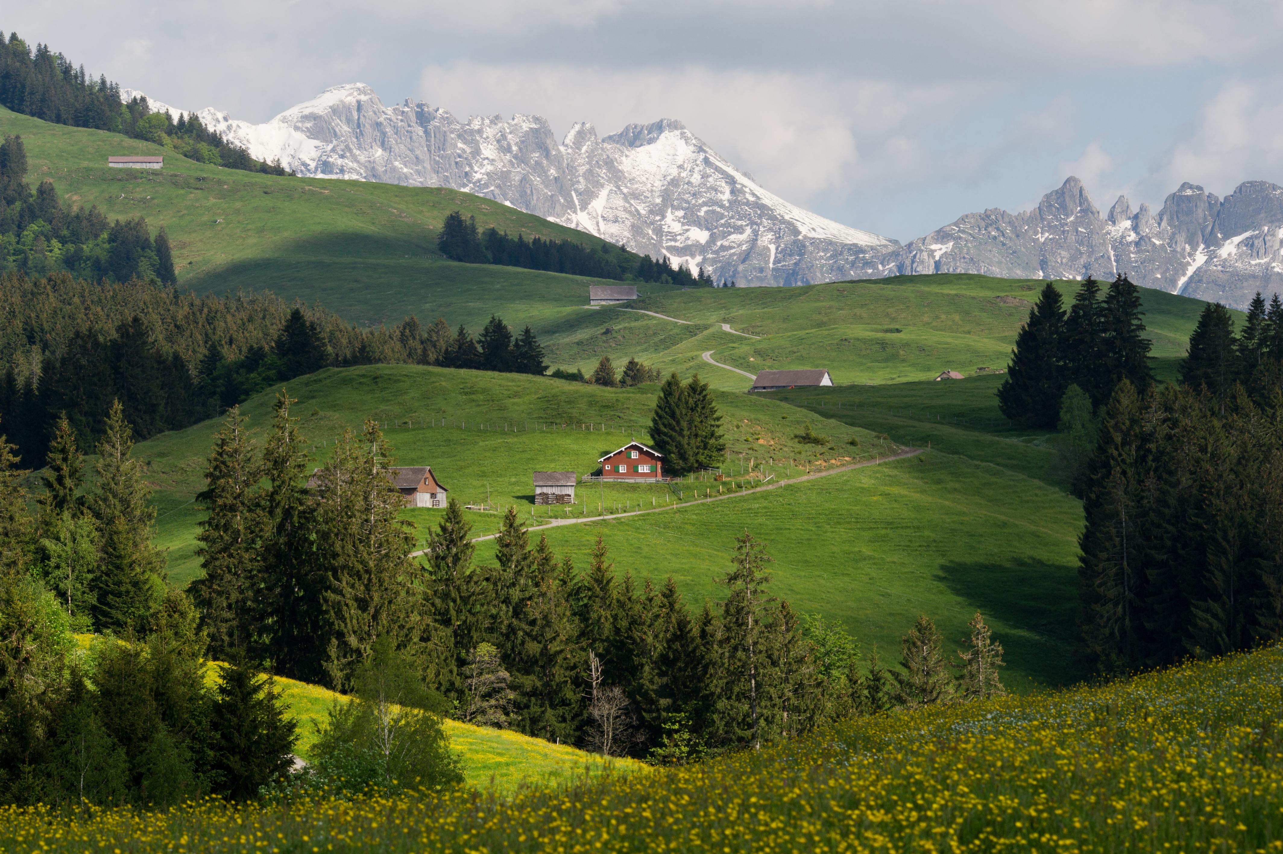Culture Landscape