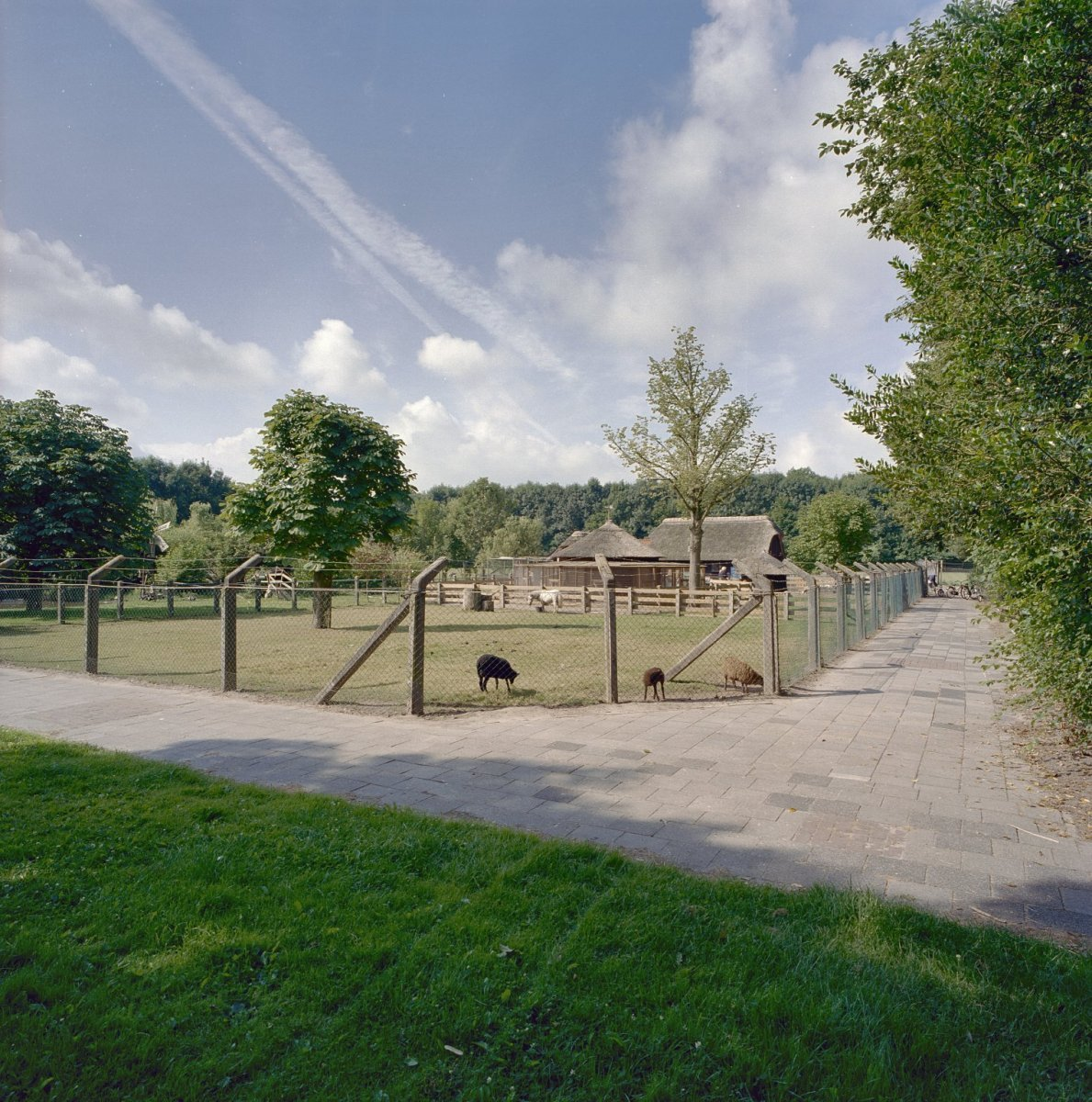 Dronten – Travel guide at Wikivoyage