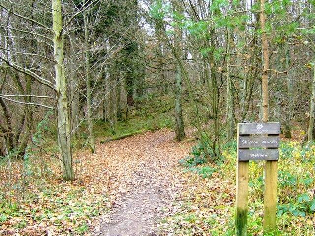 Path through Skipton Wood