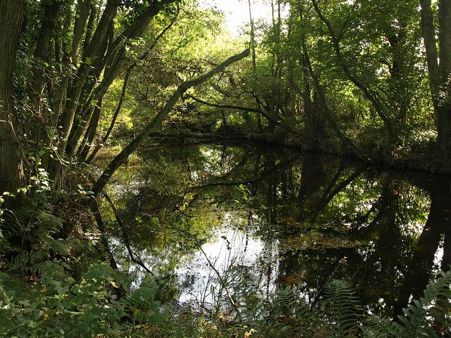 Remains of Stover Canal - geograph.org.uk - 994022