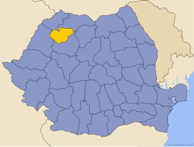 Administrative map of Руминия with Салаж county highlighted