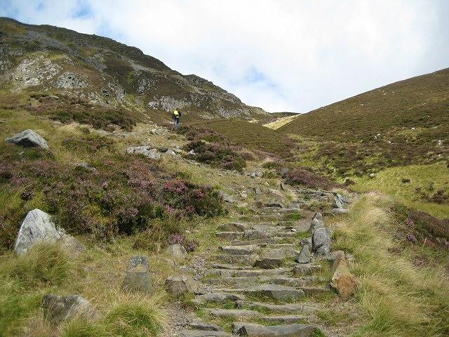 Steps up Ben Vrackie - geograph.org.uk - 538919