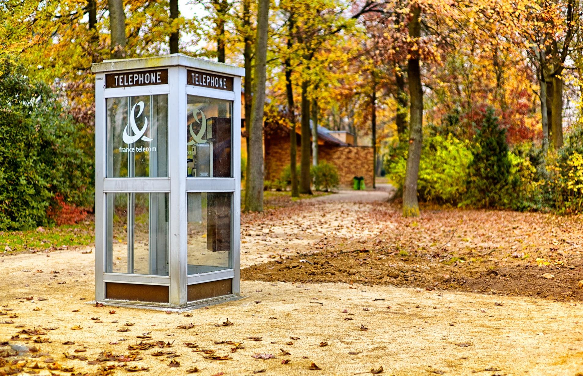 FileTelephone booth, Bois de Vincennes, Paris 23 November  ~ Bois De Vincennes Paris