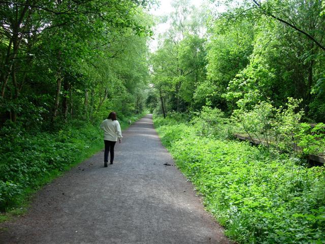 The Derwent Walk - geograph.org.uk - 176064