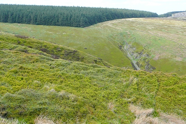Towards Radnor Forest - geograph.org.uk - 1300527