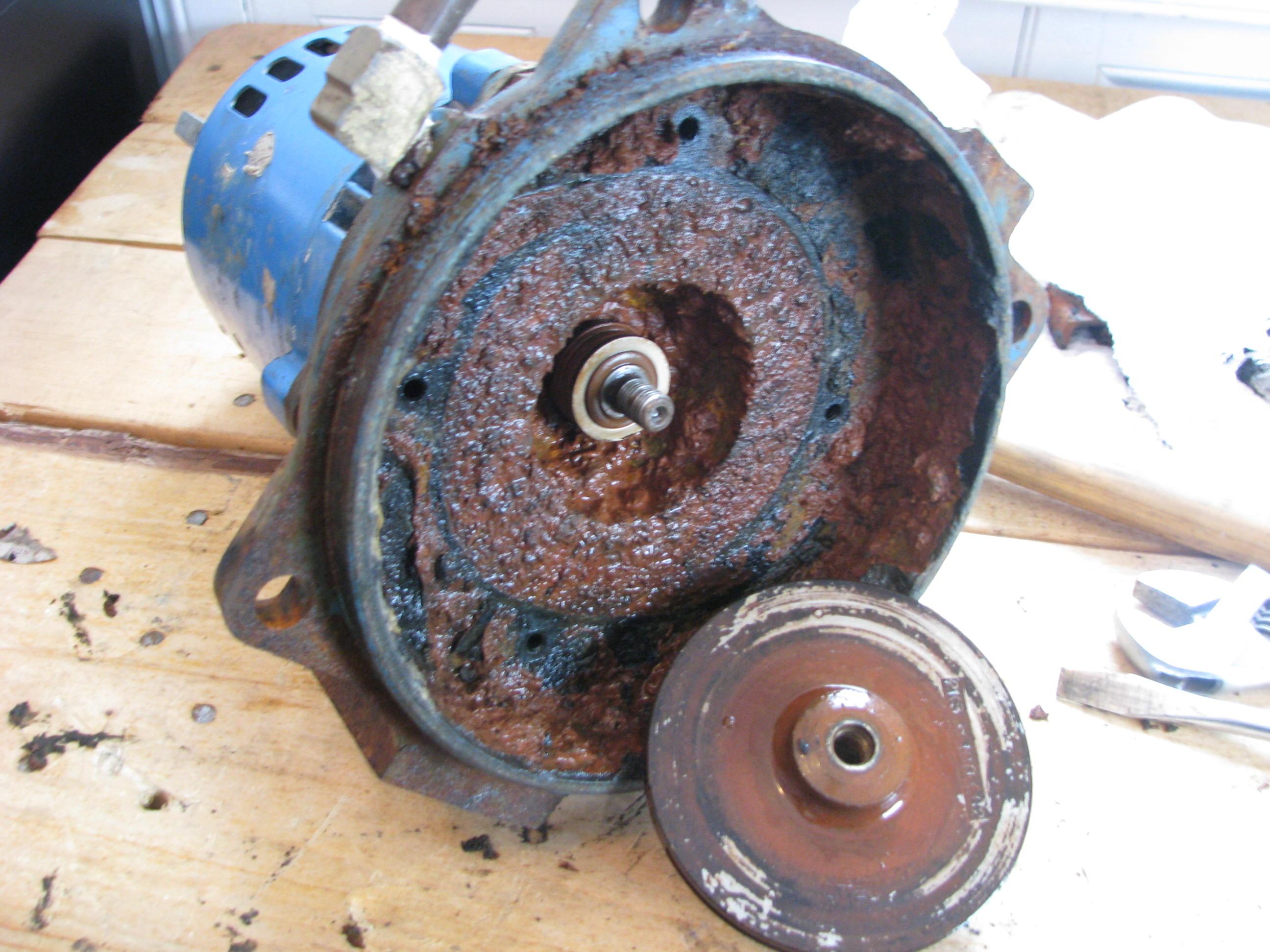 Water Pump Impeller For Suzuki Df