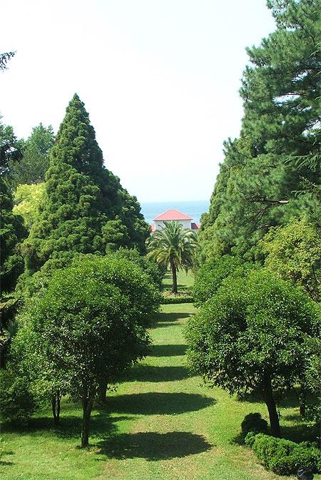 Jardin botanique de batoum wikip dia for M jardins miniac morvan