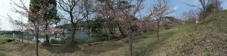 とんど山桜園 - panoramio.jpg