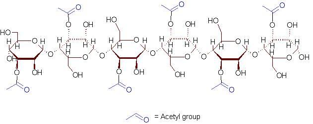 Plant Chemical Components : Représentation molécule d acemannan