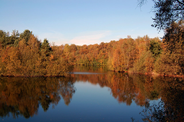 Autumn Colours in Swanholme Lakes - geograph.org.uk - 622243