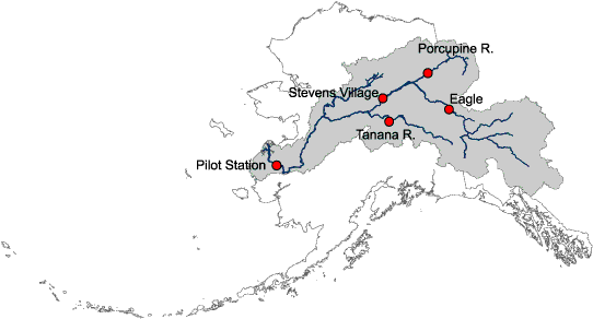 FileBw Yukon River Drainage Basinpng Wikimedia Commons - Yukon river world map