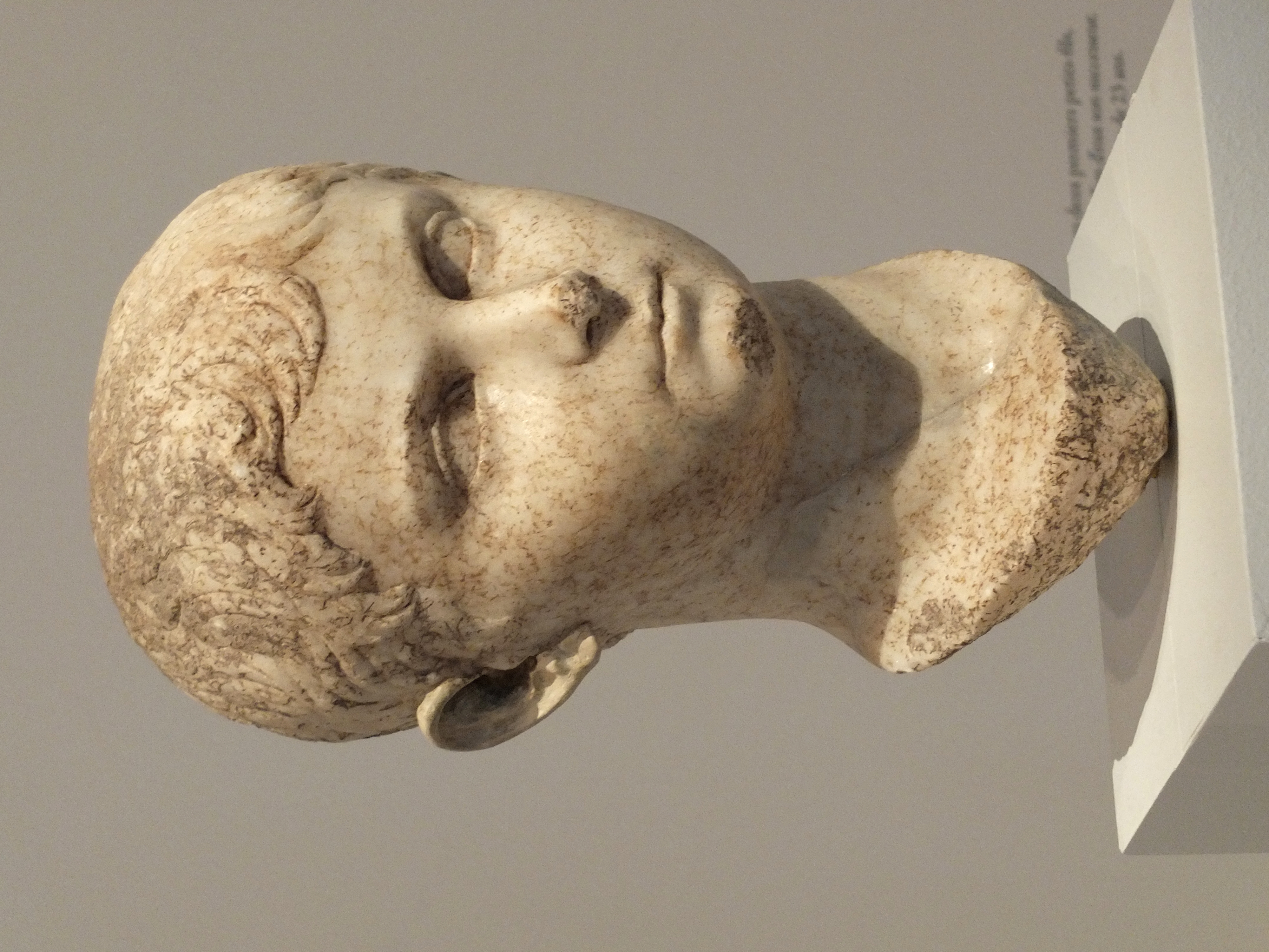 Caius César Rome 2 augGP2014.jpg