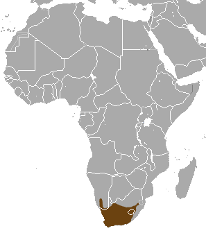 Cape Gray Mongoose area.png