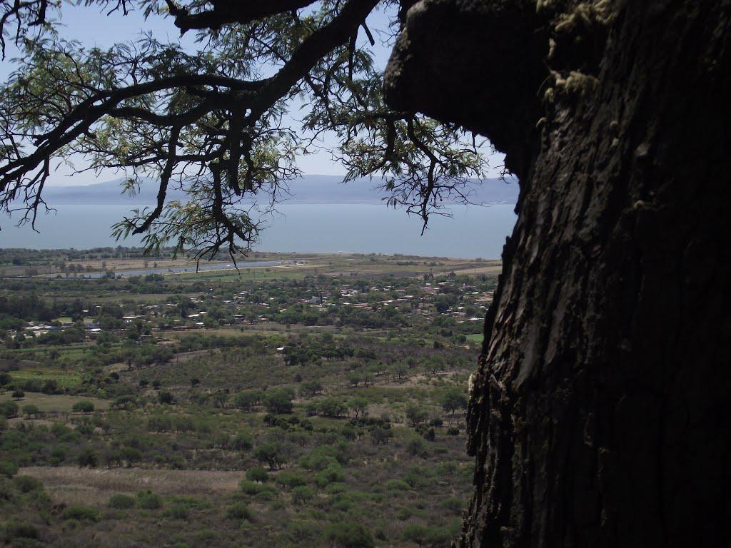 Resultado de imagen para Ejido de Santa Cruz de la Soledad, municipio de Chapala
