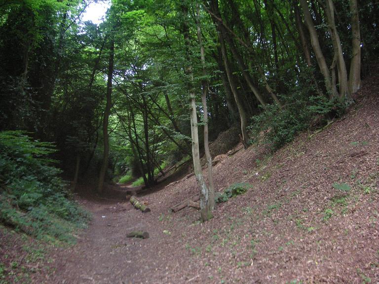 Devil's Dyke Hertfordshire (1)