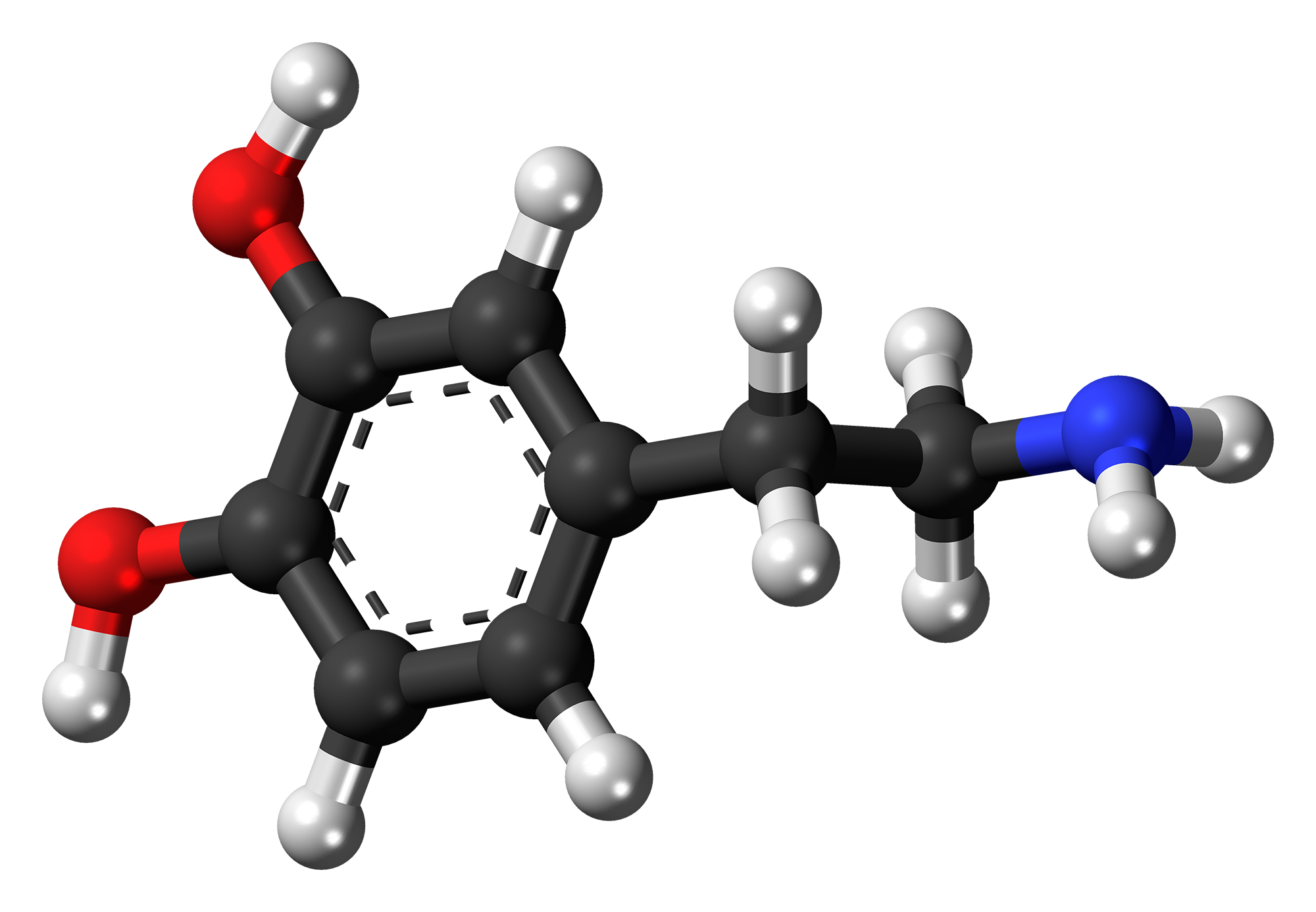 Dopamine (medication) - Wikipedia