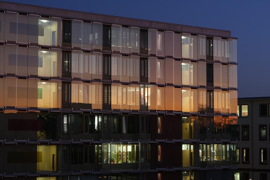 Web Uni Frankfurt