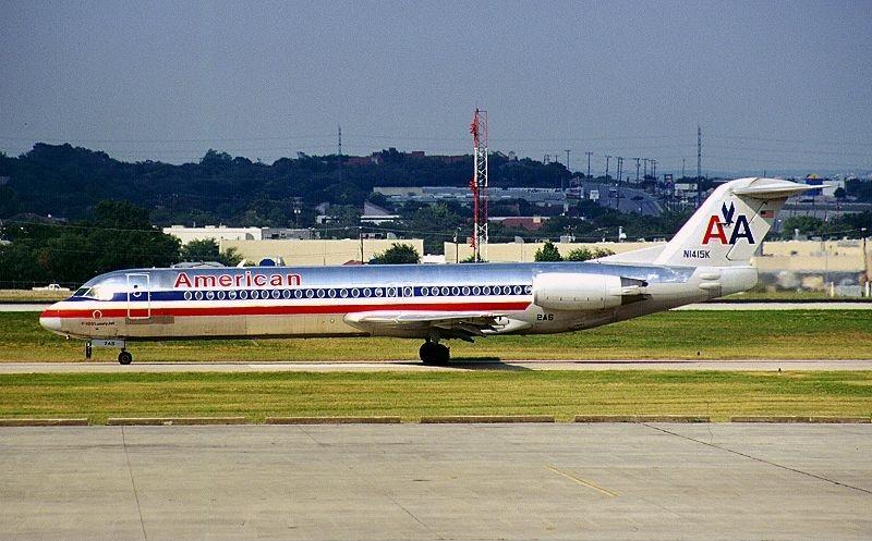 American Airlines International Dog Travel