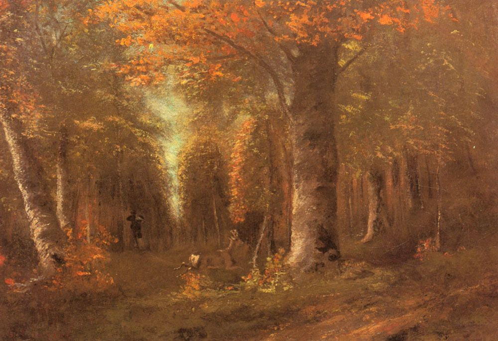 Image result for forest in autumn