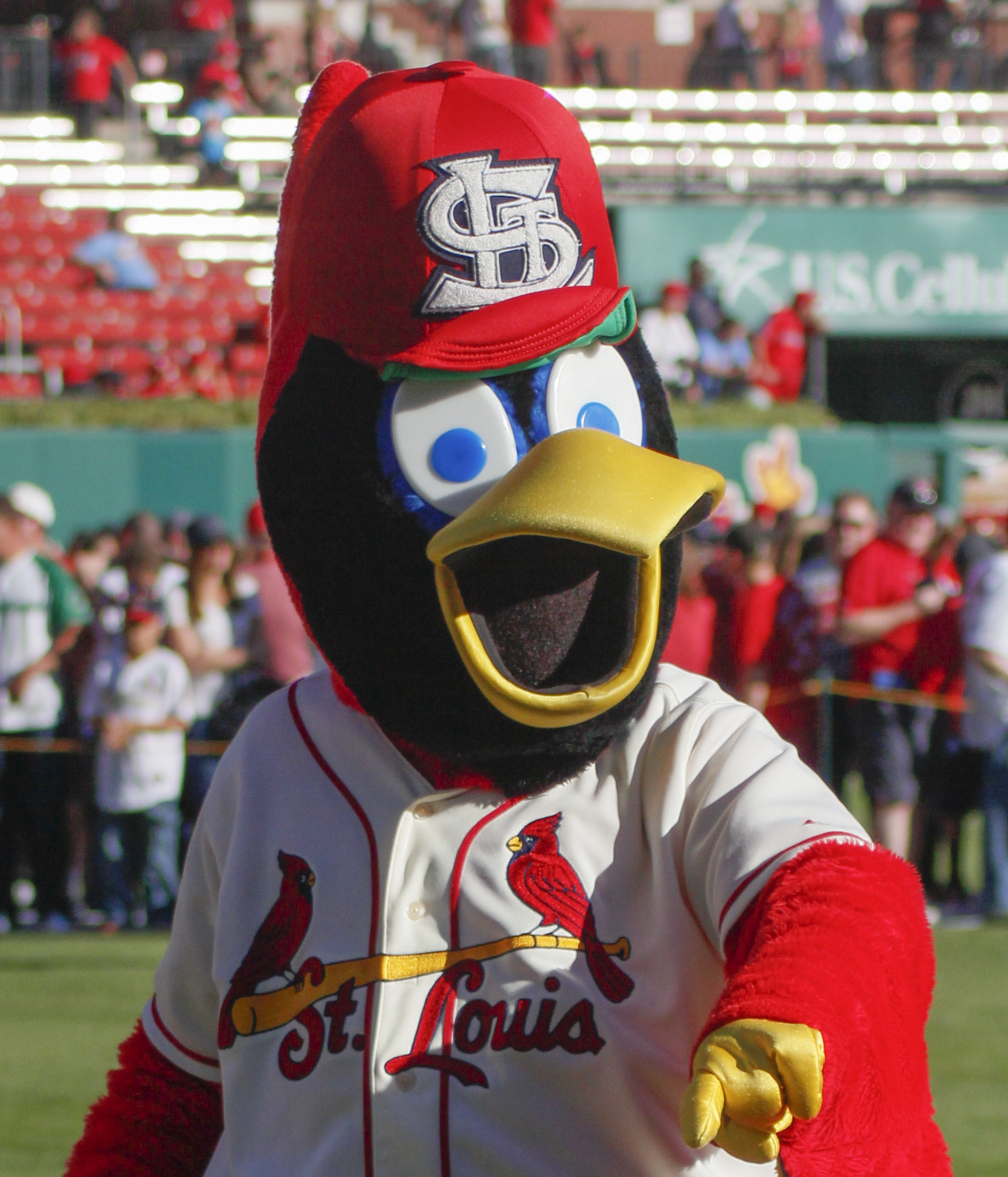 Image result for fredbird