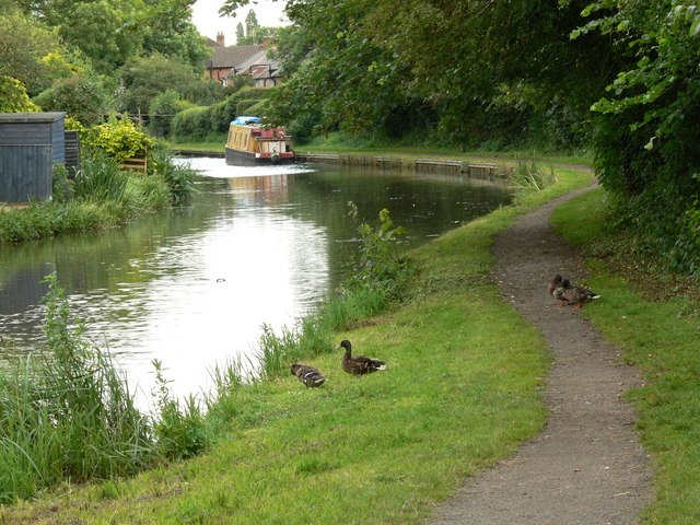 File:Grand Union Canal - geograph.org.uk - 481602.jpg