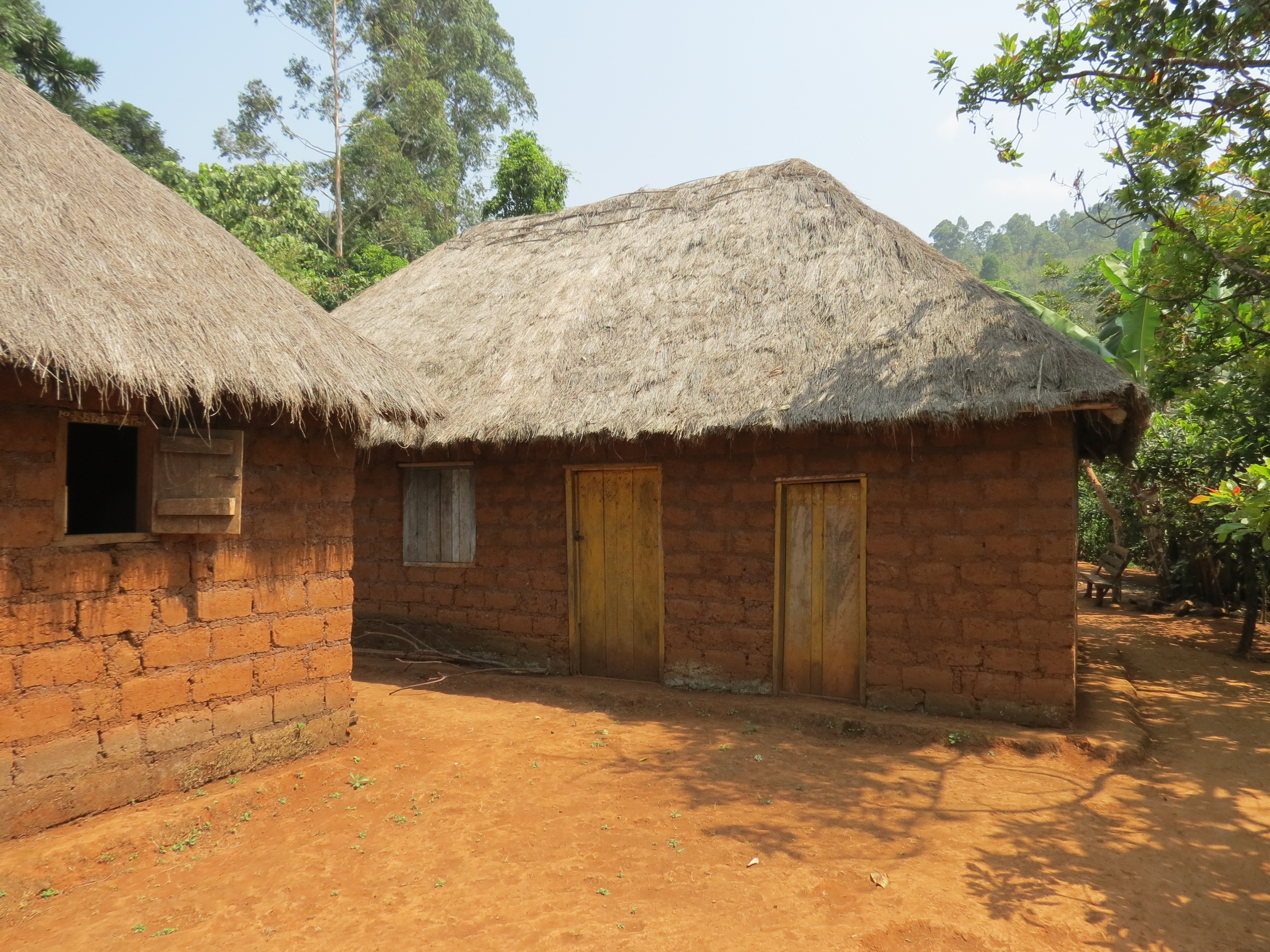 File:House Made Of Mud Bricks With A Thatched Roof In Belo (1)